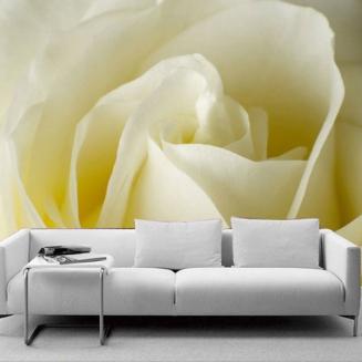 沙发装饰无纺布